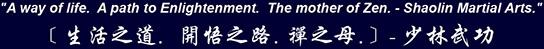 Shaolintemplemi Logo